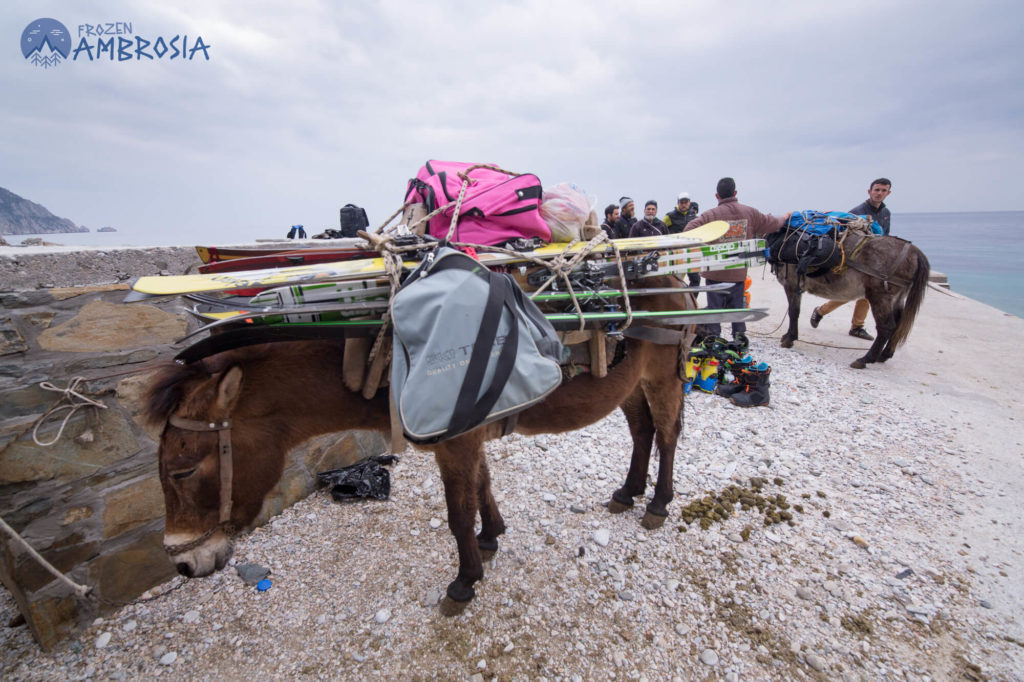 Mount Athos Loading the Mules
